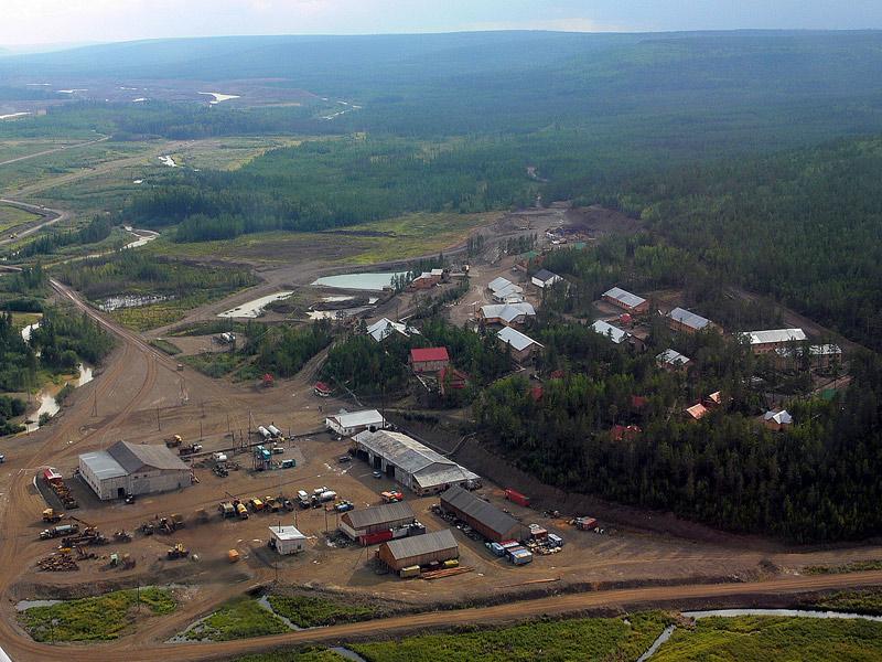 Проекты освоения лесов лесного участка заготовка древесины